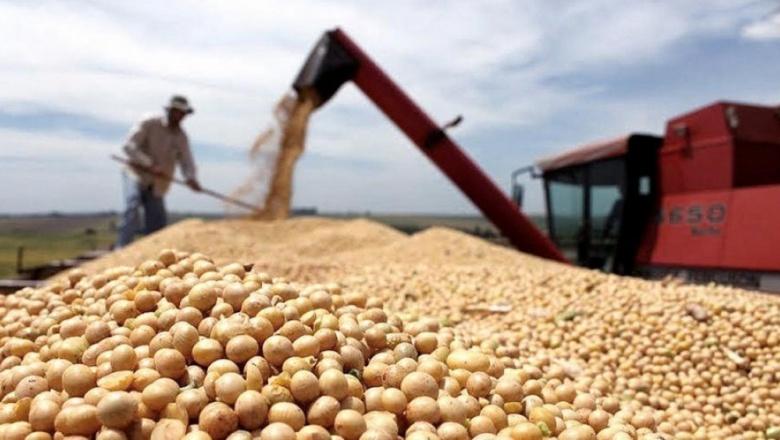 Autorizan pago de compensaciones para pequeños y medianos productores de soja