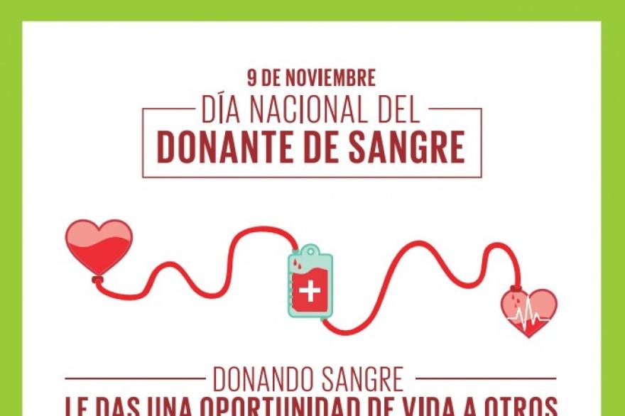 Día Nacional del Donante de Sangre: Realizan jornada de ...