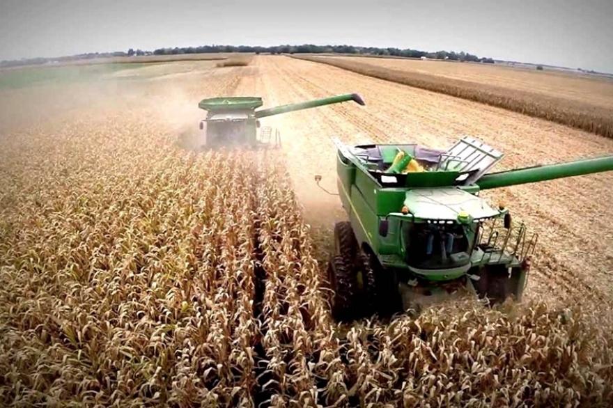 Preocupación de las bolsas de cereales